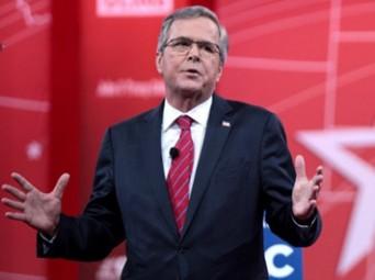 Jeb-Bush-ed