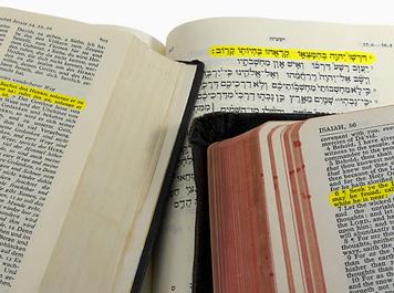 bible-translation